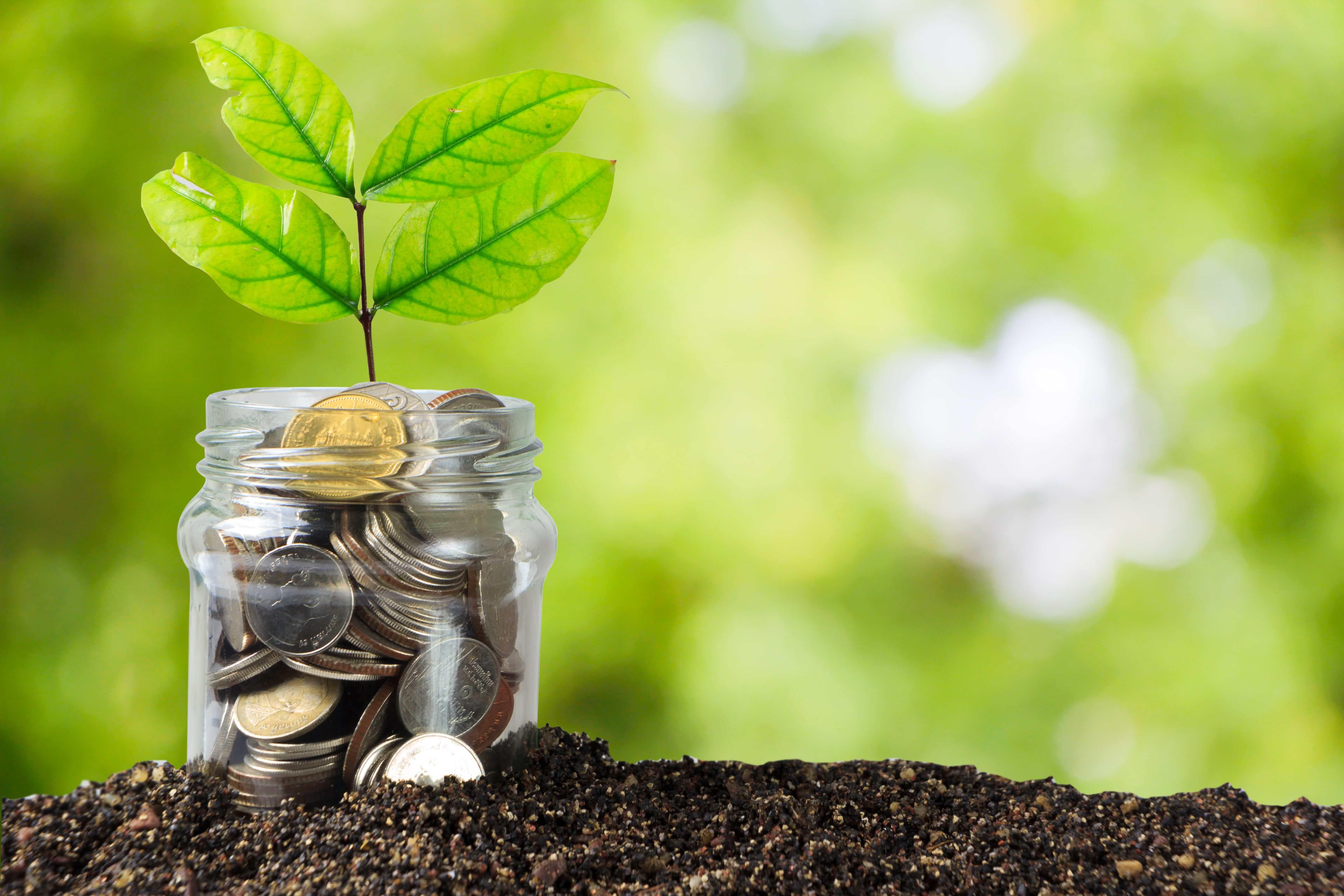 Nuevo subsidio semillero de propietarios