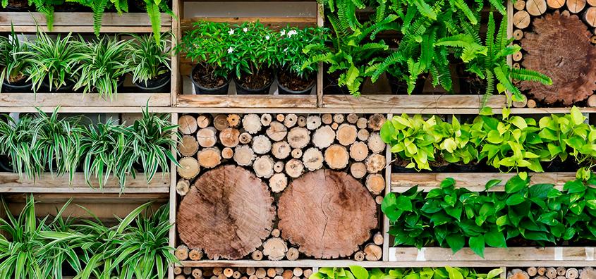 Por qu tener un jard n vertical en casa beneficios y - Jardin vertical en casa ...